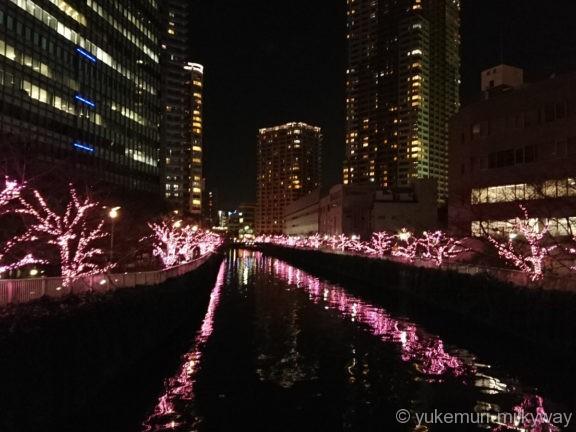 大崎・御成橋からの目黒川の桜イルミ