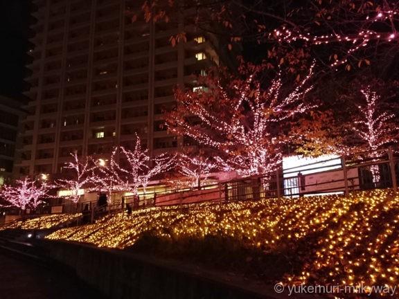 五反田ふれあい水辺広場イルミ1