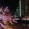 冬の目黒川に、桜咲く。<br>~五反田・大崎~ 東京都心イルミめぐり その3