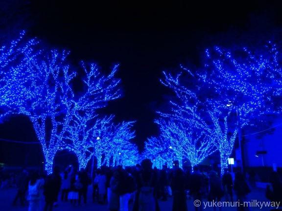 渋谷・青の洞窟 代々木公園公園入口2