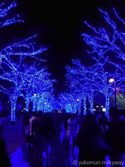 渋谷・青の洞窟 代々木公園公園中程1