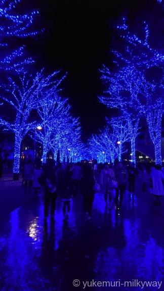 渋谷・青の洞窟 代々木公園公園中程3