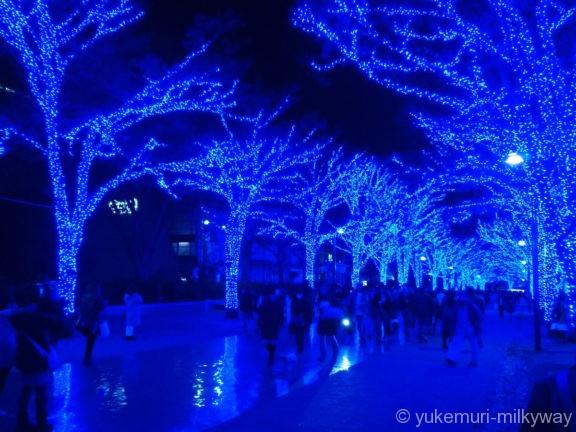 渋谷・青の洞窟 代々木公園公園中程5