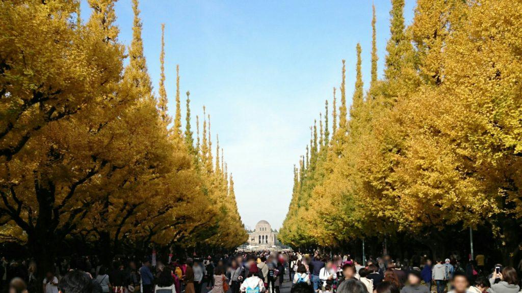 神宮外苑いちょう並木中央1
