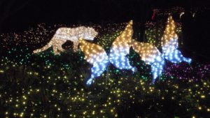 さがみ湖イルミリオン 光の動物園2