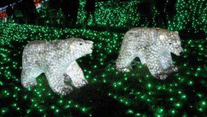 さがみ湖イルミリオン 光の動物園3