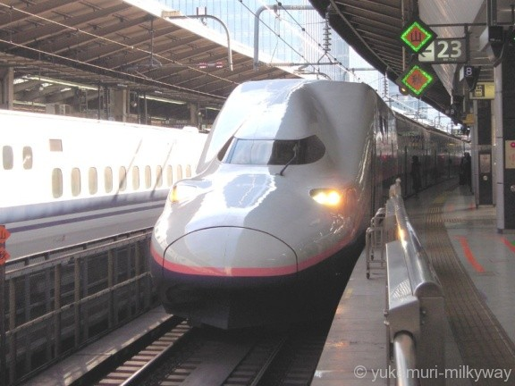JR東日本E4系 Maxとき371号 新潟行き E444-4 @東京