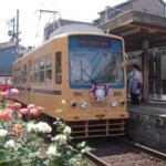 【都電】引退直前7000形7022号車・都電バラ号9000形9001号車ほか(写真20枚)