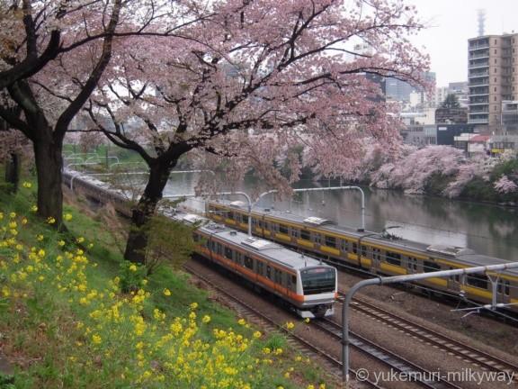 桜と電車・飯田橋駅付近・東側 JR東日本中央線快速E233系