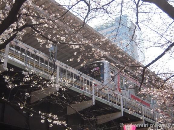 桜と電車・中目黒駅 4番ホーム 東急5050系